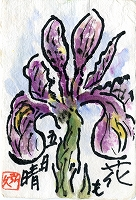 絵手紙(20120601)