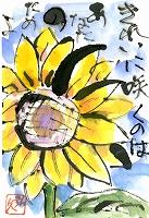 絵手紙(20120801)