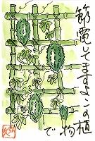 絵手紙(20120815)