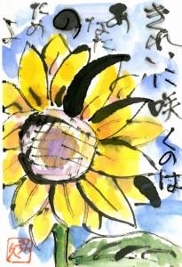絵手紙(b20120801)